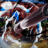 Imágenes de One Piece Burning Blood